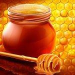 Мёд и грецкие орехи для потенции