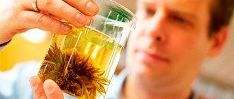 Мужчина заваривает травяной чай