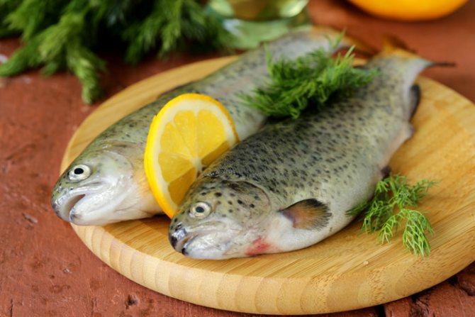 Самая полезная рыба - форель